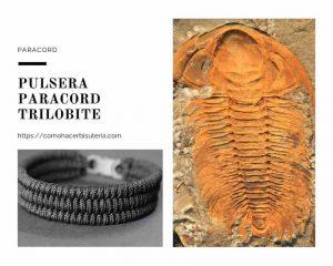 Pulsera paracord trilobite